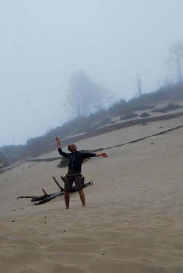 dune-dancer