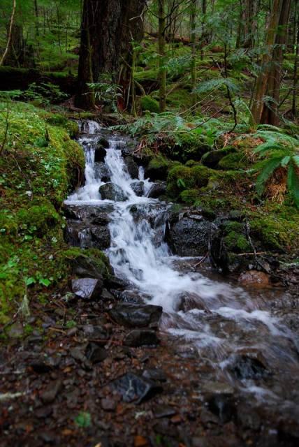 mullinix creek