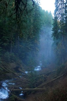 multnomah creek fog