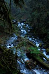 multnomah creek