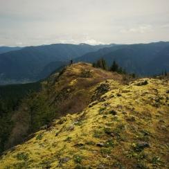 Hardy Ridge + Mt. Hood