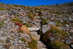 Climbing to the Top of Burroughs Pass