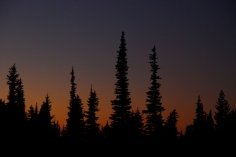 Berkeley Park Meadow Sunset